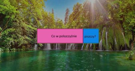 Międzyklasowy projekt polonistyczny