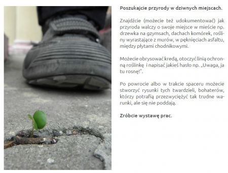 Dzień Ziemi w lokalizacji Bajkowa